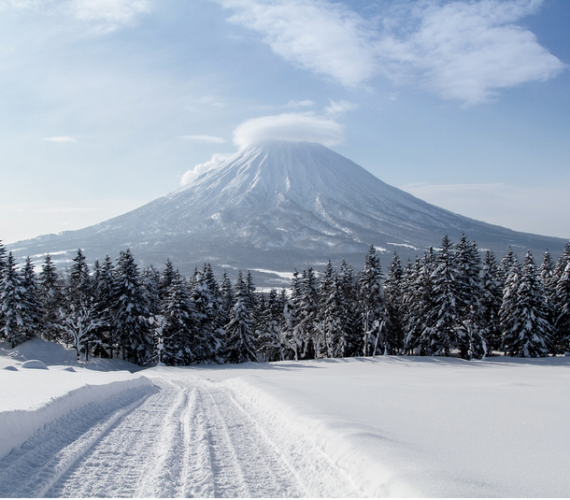 Getting to Niseko